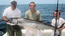Catching Dolphin on a charter